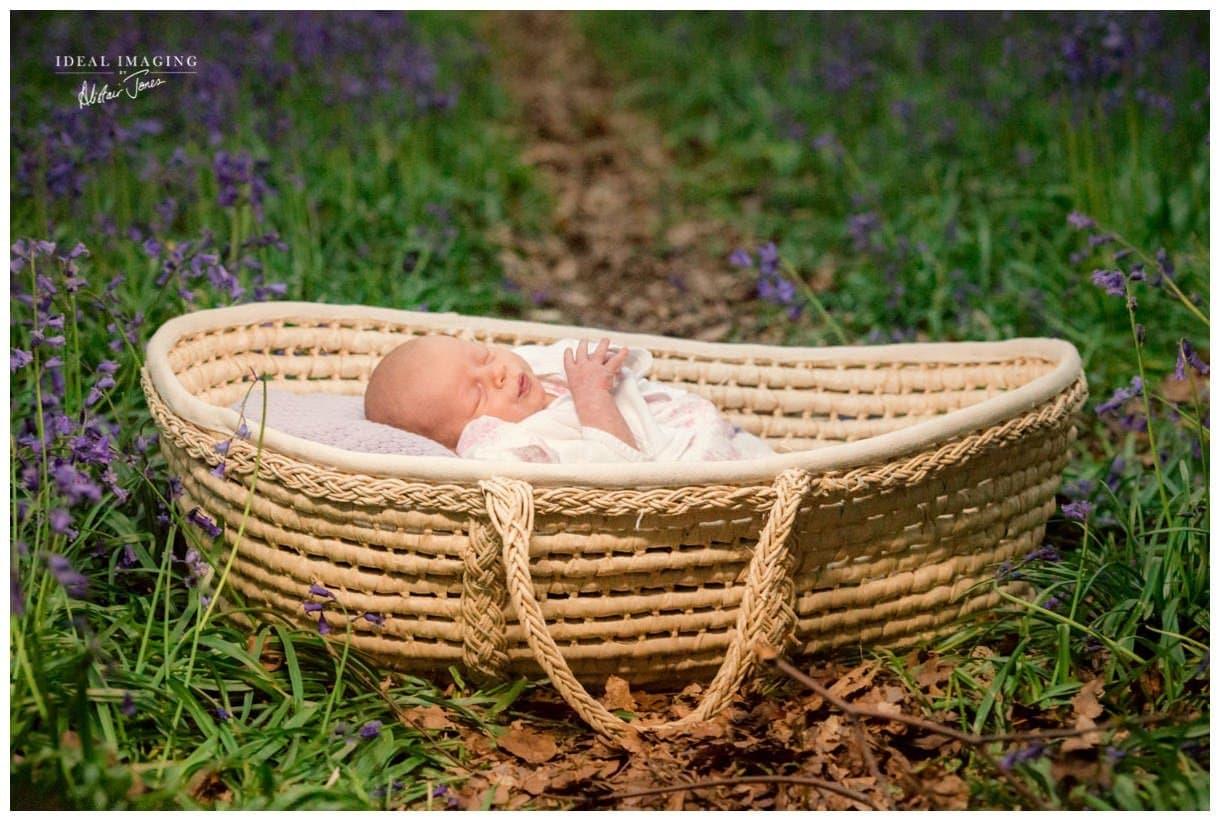 children_family_portraits_bluebells-055