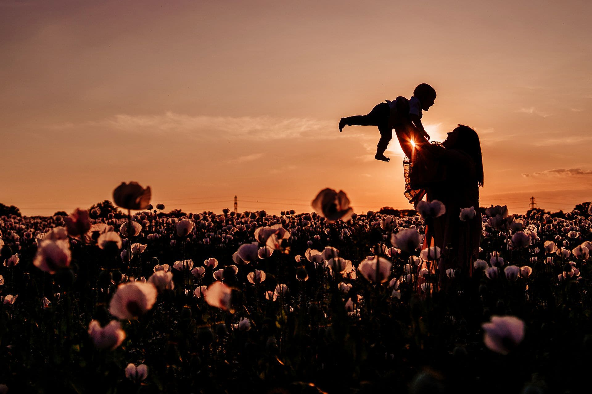 Family Photoshoots in the Poppy Fields // Round-up
