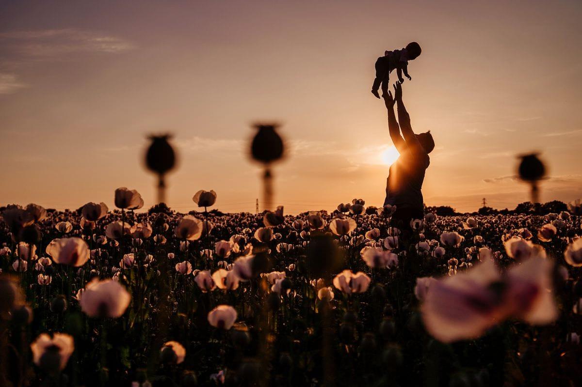 family photos sunset poppy fields